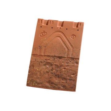 Tuile Plate 20X30 Huguenot